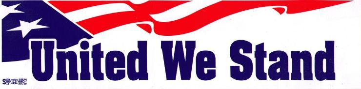5954-United-We-Stand-Flag
